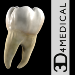 Dental Patient Education - BFEstéticaDental - TodoAndroid360